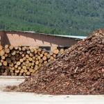 biomasa ventajas desventajas