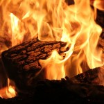 factores caldera biomasa